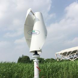 Ingrosso Vendita CALDA! Generatore eolico ad asse verticale da 200 w 24v con regolatore AUTO MPPT 12v 24v, generatore eolico Maglev