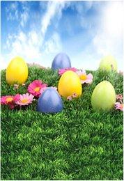 Ovos de Páscoa coloridos Photo Background para Crianças Céu Azul Rosa Flores Pradaria Verde Bebê Recém-nascido Fotografia Adereços Primavera Pano de Fundo para Venda