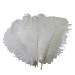 Ingrosso Piume colorate di piume di struzzo di 10-12 pollici (25-30 cm) per la decorazione festiva Z134 della decorazione di evento di nozze di centrotavola di cerimonia nuziale