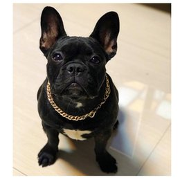 bulldog gold NZ - Plastic Gold Chain Cat Dog Necklace for Pet Small Dogs Collar Puppy Cat Funny Collars Pets Supplies Product French Bulldog Teddy