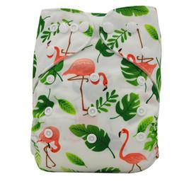 3f68503970899 Piña flamenco bebé lavable pañal de tela cubierta Marca animales impresos  bebé reutilizable pañales para bebé pantalones de entrenamiento Potty ENVÍO  GRATIS
