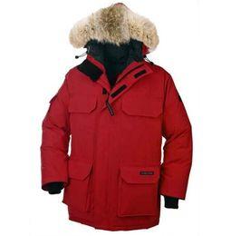 $enCountryForm.capitalKeyWord NZ - Classic brand Mens Goose down jacket Coat Fur Goose Men CITADEL Parkas fur jacket Warm Jackets coats cotton male hooded casual parka C00211d