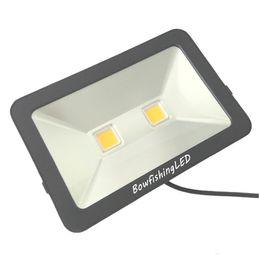 Großhandel LightApple Bowfishing LED 100W Flutlicht im Freien helles 9000LM wasserdichtes IP65 220V 110V 85-265V DHL geben Verschiffen frei