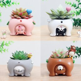 Upside Down Plant Pots Nz Buy New Upside Down Plant Pots Online