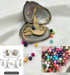 silver oyster shell Australia - Beautiful Freshwater Round Pearl with Oyster Shell 6-7mm Pearls in Oyster One Pearls Oysters DIY Jewelry making