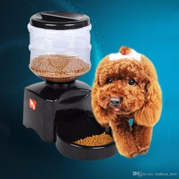 plastic lcd screen NZ - Plastic 5.5L Automatic Pet Feeder with Voice Message Recording and LCD Screen Large Smart Dogs Cats Food Bowl Dispenser DHL Free Shipping