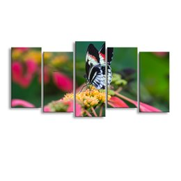 Canvas Prints Australia - 5 pieces high-definition print butterfly canvas painting poster and wall art living room picture B-075