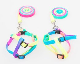 Nylon Dog Collar Wholesale UK - wholesale Colorful Rope Collars Pet Chest Strap Dog Traction Chain Small Dog Harness Dogs Supplies