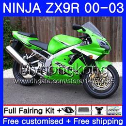 $enCountryForm.capitalKeyWord UK - Body For KAWASAKI NINJA ZX 900 9 R ZX 9R 2000 2001 2002 2003 216HM.26 ZX900 ZX-9R 900CC ZX9 R Light green hot ZX9R 00 01 02 03 Fairings Kit