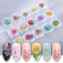 $enCountryForm.capitalKeyWord Australia - Summer new foreign trade cross border hot dry flower day fresh and immortal dried flowers DIY single nail tools