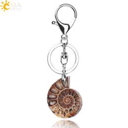 $enCountryForm.capitalKeyWord UK - CSJA Motorcycle Car Door Keychains Boho Key Rings Key Holder Lobster for Men Women Natural Stone Ammonite Animal Fossil Shell Pendants F024