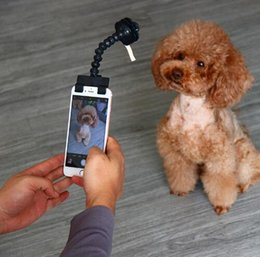 Discount stick toy for cats Pet Selfie Stick for Pets Dog Cat Portable Pet Selfie Stick Phone Attachment Dog Cat Take Photos Training Toy Pet Suppli