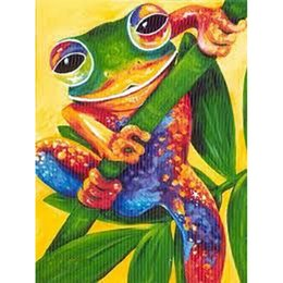 Color Diy Painting Australia - 5D Diy diamond painting cross stitch rhinestone painting diamond embroidery home decoration crafts art, color leaves color frog