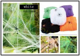 $enCountryForm.capitalKeyWord NZ - Halloween Scary Party Scene Props White Stretchy Cobweb 20G Spider Web Horror Bar Haunted House layout Halloween Decoration
