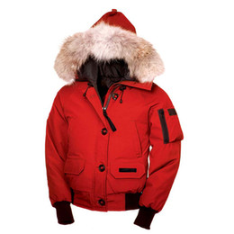 $enCountryForm.capitalKeyWord UK - XS-2XL free shipping women high quality winter White goose Down jacket Bomber Jacket Outdoor climbing Down Jacket Women's Clothing