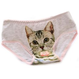 f537c2af9f Cat girl sexy online shopping - Hot Selling Cotton Panties Women s Plus  Size Underwear Briefs