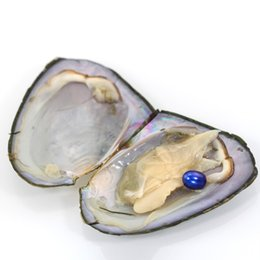 China Oval Oyster Pearl 2018 new 7-8mm 20 mix color Fresh water Natural pearl Gift DIY Loose Decorations Vacuum Packaging Wholesale free shipping suppliers