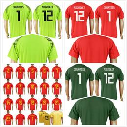 363c4e19c belgium football jersey 2019 - 2018 World Cup Belgium Soccer Jersey  Goalkeeper 10 E.HAZARD