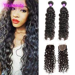 Discount free hair bundles - Brazilian Human Hair 2 Bundles With Lace Closure 3pieces lot Water Wave Hair Extensions With 4X4 Lace Closure Middle Fre