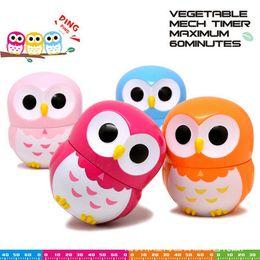 2018 new owl Kitchen Timer 60 Minute Mechanical Timer Cuenta regresiva Owlet Timers Temporizador de huevo cocido color surtido