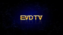 EVDTV HAY IPTV France IPTV Turquie TV ARABIQUE Pays-Bas 3300 chaînes VOD EPG travaillant sur Smart tv android tv box MAG250 254
