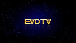 Toptan satış EVDTV HAY IPTV Fransa IPTV Türkiye ARAPÇA TV Hollanda 3300 Kanallar VOD EPG Akıllı tv android tv box üzerinde çalışan MAG250 254