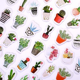 Wholesale 45pcs pack DIY Cactus Plant Label Stickers Box Set Scrapbooking NotDecorations Fridge Magnets