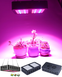 Wholesale Reflector W Full Spectrum LED Grow Light for Indoor Greenhouse grow tent Plants Veg Flower Lamp grow led light