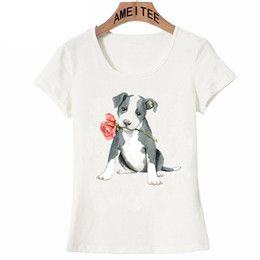 d1e8e5e9 New Summer Women T Shirt Valentine Rose Pit Bull Dog Hip Hop T-Shirt Mini  Schnauzer Boston Terrier Casual Tops Cute girl Tees