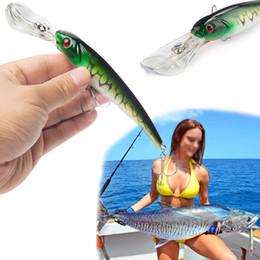 $enCountryForm.capitalKeyWord Australia - SEALURER 1Pcs Big Float Minnow Artificial Plastic Deep Diver Hard Lures 16.5cm27.4g Fishing Lure Crankbait Y18100806