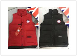 d0309fc7e26 mens goose vest jackets designer jackets Fashion Canada Black Grey Blue  womens Coat Canadian Down Jackets Outdoor Sports Cold Winter Holiday