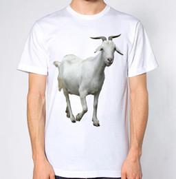 Ingrosso T-shirt di capra