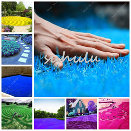 $enCountryForm.capitalKeyWord Australia - Rainbow Lawn Seeds 1000 Pcs Soccer Fields Villa High-Grade Turf Grass Seeds Soft Runner Turfgrass For Garden Plant Loss Promotion!