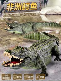cea6c6b3 7 Fotos Cocodrilos online-Control remoto cocodrilo Cocodrilo Cayman Radio  RC Alligator control remoto animal juguete sonido