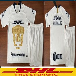 a029c5572 Only jerseys 2018 2019 Mexico club Cougar UNAM kids home Soccer jerseys  boys shirt 18 19 Cougar UNAM children boys shirts Rugby Jerseys