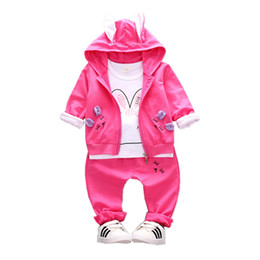 $enCountryForm.capitalKeyWord Australia - 2018 Autumn Children Girls Cotton Garment Baby Cartoon Rabbit Shape Hoodies Coat T-shirt Pants 3Pcs Set