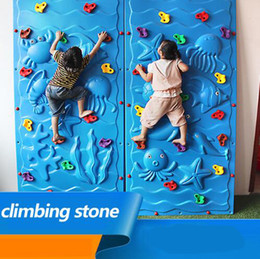 Wholesale Plastic Climbing Wall Rock Holds Outdoor Toy Set Kits Rock Climbing Stone Training Playing Outside Adult Outdoor Toy