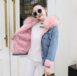 538dc2b8326 Winter 2019 Korean thickened plush big fur collar single breasted jeans  jacket woollen coat for female fur parka