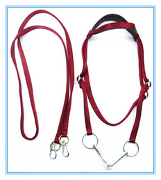 Wholesale Fullset Horse halter Bridle Pony Fixed Rein Belt Durable Horse Riding Accessories harness
