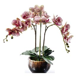 real touch orchid flowers 2019 - Flower Arrangment Purple Orchids With Leaves Real Touch Flower Wedding Party Fake Decorative Event Free Shipping cheap r