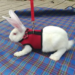 Bow harness online shopping - New Pattern Rabbit Rope Adjustable Leashes Fashion Small Pets Chest Straps With Bow Red Blue High Grade qq Ww