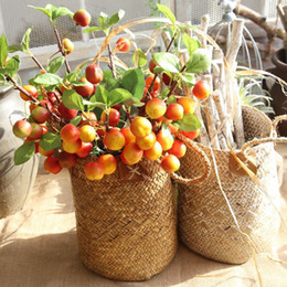$enCountryForm.capitalKeyWord UK - Artificial Apple Branch Tree Simulation Foam Apple Tree Branch Fruit Leaves Fake Plant Flower Wedding Home Party Table Decor Plant