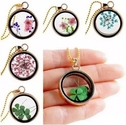 $enCountryForm.capitalKeyWord Australia - 9 Colors Clovers Gold Plated Dried Flower Necklace Round Pendant Clover Floating Locket Charms Necklace Dry Flower Pendant Necklaces