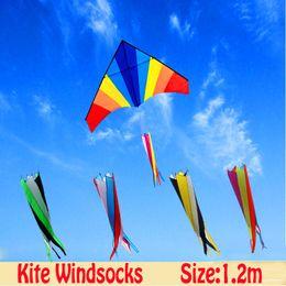 $enCountryForm.capitalKeyWord Australia - free shipping high quality delta kite windsocks 2pcs lot ripstop nylon fabric eagle kite flying octopus board albatross