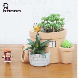 Опт roogo оригинальной формы шаржа животный дом бонсай в горшках цветочный горшок смолаы творческий кашпо