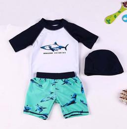 Boys two piece swimwear online shopping - 2018 new boys swimwear set children boy shark printed bath suit kids beach wear summer bathingsuit
