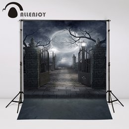 scenic background paper 2019 - Allenjoy photo background night door Moon Cemetery fotografia Halloween celebration backdrops photographic studio wall-p