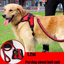 Small collar SuitS online shopping - Midsize Pet Traction Rope Pet Dog Chest Belt Suit Nylon Haulage Rope m Hauling Cable New Arrival Pet Appliance