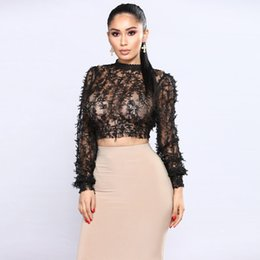 Sexy Women Sheer Lace Crop Top High Neck Long Sleeve Mesh See-through T  Shirt Femme Slim Fit Cropped T-Shirt Feminino 2018 Black f738bd9ea078