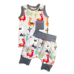 Gray cute fashion pants online shopping - 2Pcs Lovely Toddler Baby Boy Girl Clothes Cartoon Alpaca Tops Sleeveless Vest Short Cute Pants Summer Fashion Outfit Set